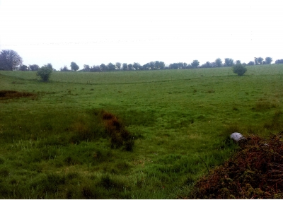 Lands for Sale in Masonbrook, Loughrea, Co. Galway